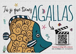 Video Puzzle Agallas